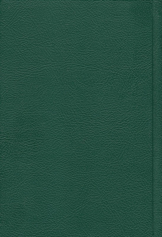 Chrześcijańskie Pisma Greckie w Przekładzie Nowego Świata po grecku