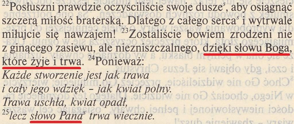 Ewangelia wg św. Jana ed. św. Pawła